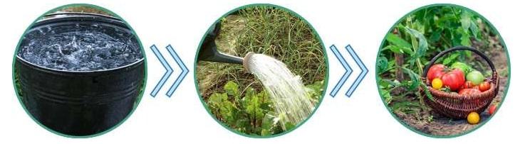 Garden Pest инструкция