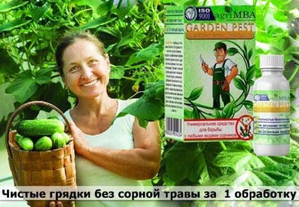 Garden Pest купить
