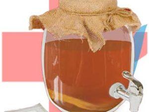 Ферментированный чайный гриб