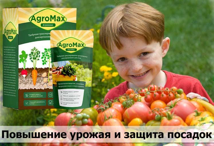 Удобрение Агромакс купить